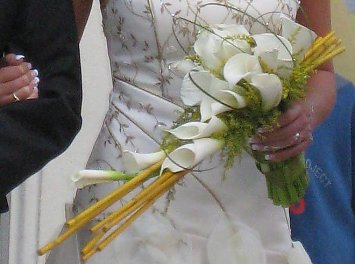 Floraria Kreativ Nunta Oradea