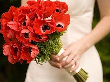 Flowers Rhapsody Nunta Oradea