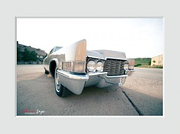 Vintage Cadillacs Nunta Oradea